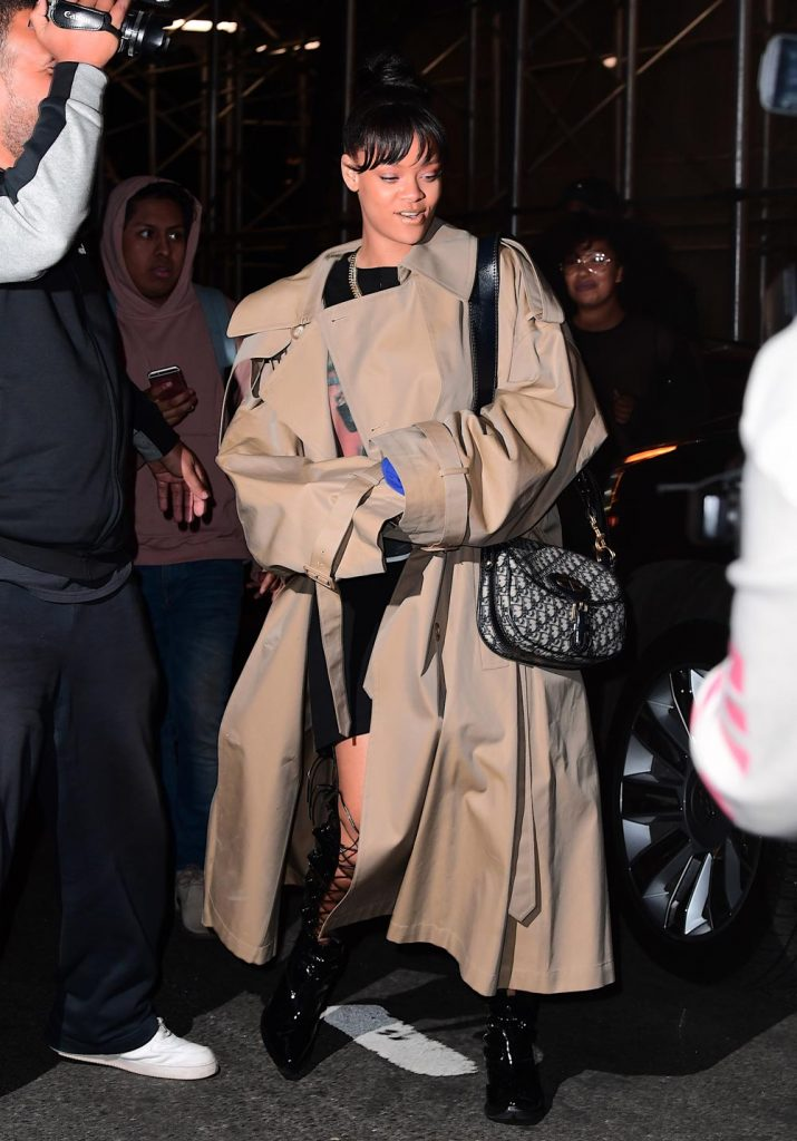 79d6753c09 Meet the Dior Bag Rihanna's Obsessed With